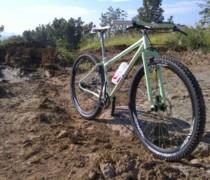 Project Belt Inbred 29 bike photo