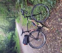 Aunty bike photo