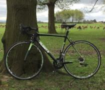 Martin bike photo